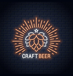 beer neon banner craft beer neon sign on wall vector image