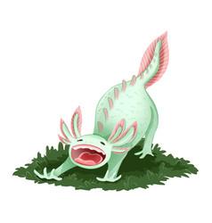 Cute axolotl isolated image yawning triton image vector