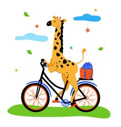 cute giraffe cycling - modern flat design style vector image