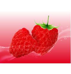 delicious juicy raspberry in spray of juice vector image