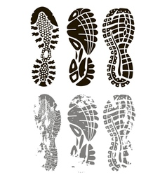 foot print vector image