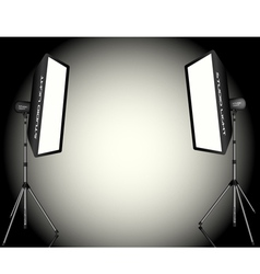 Photographic lighting vector
