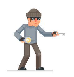 picklock housebreaker thieves keys flashlight hand vector image