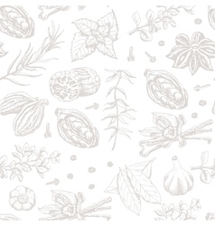 Seamless pattern with spices and herbs on white vector