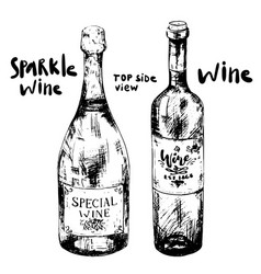 two different bottles wine vector image