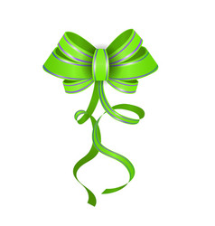 green realistic double gift bow vector image vector image