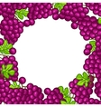 Background design with stylized fresh ripe grapes vector image
