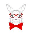 cute bunny portrait hand drawn rabbit head vector image vector image