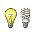 energy saving spiral lamp and glowing light vector image vector image