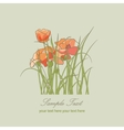 flowers poppies floral pattern vector image vector image