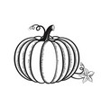 hand drawn pumpkin outline graphic icon sketch vector image