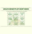 health benefits hemp seeds horizontal info vector image vector image