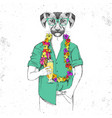 retro hipster animal dog with tropic cocktail vector image
