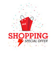 shopping special offer red bag background i vector image vector image
