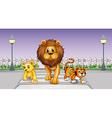 Wild animals in the street vector image vector image