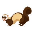 Cartoon smiling ferret vector image vector image