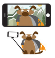 Concept flat design with dog and selfie stick vector image vector image