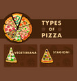 different pizza types poster cartoon template vector image vector image