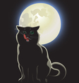 nocturnal black cat vector image