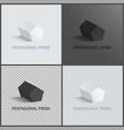 pentagonal prisms set on dark light and vector image vector image