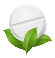 tablet and leaves on white background vector image vector image