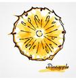 Pineapple fruit slice vector image