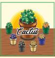 cactus desrt vector image vector image
