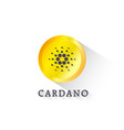 cardano crypto currency with yellow coin vector image