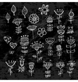 set flower elements drawn with chalk vector image