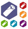 shawarma sandwich icons set hexagon vector image vector image