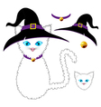 White Cat Witch vector image vector image