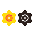 Narcissus - flower icon set vector image
