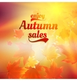 Autumn sale realistic Leaves typography poster