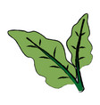 leaves plant natural foliage garden icon vector image