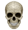 Mosaic skull vector image vector image