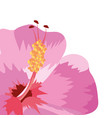 nature flower cartoon vector image