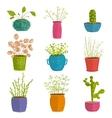 set green indoor plants in pots vector image vector image