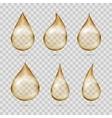 Transparent yellow oil drops set vector image vector image