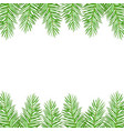twigs of green christmas spruce vector image