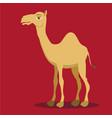 - cartoon camelcamel logo vector image