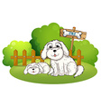 A backyard with two cute dogs vector image vector image