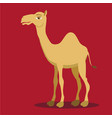 cartoon camelcamel logo vector image