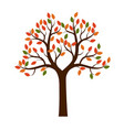 color shape of autumn tree vector image