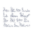 hand drawn line floral decoration collection vector image vector image