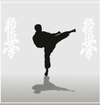 man showing karate on a light background vector image