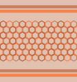 pattern hexagon background vector image vector image