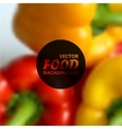 realistic food background of red and yellow vector image vector image