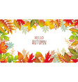 seasonal banner of autumnal leaves vector image