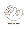 Sloth cartoon coloring book vector image
