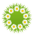 Spring freshness round card with grass and vector image vector image